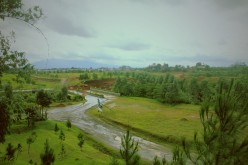 Pemandangan hijau di balik Karimata
