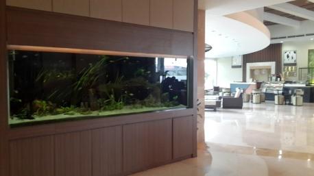 Aquarium di Lobby Hotel