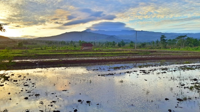 Nature - Mount SlametNature - Mount Slamet