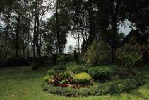 Taman depan kolam