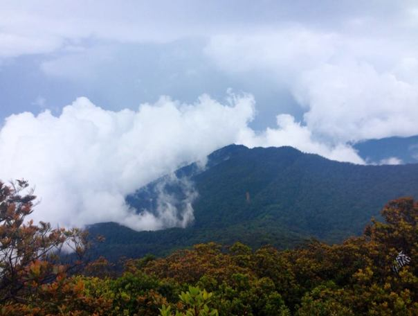View from Gede