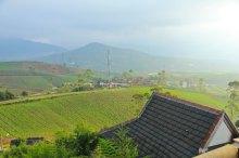 Lovely Cikurai Mountain