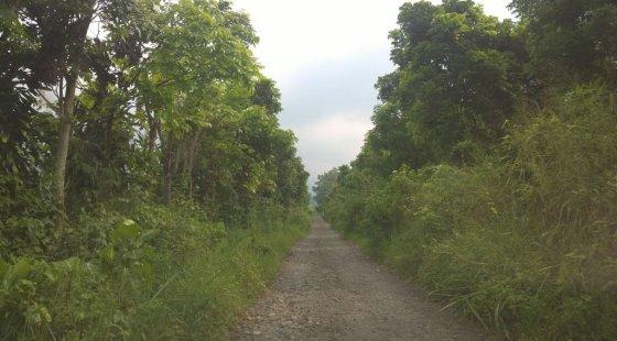 Jalan Berbatu