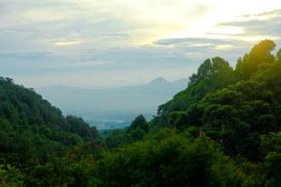 Pemandangan Pagi Hari
