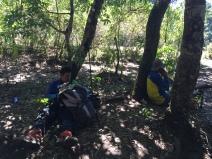 Hutan Pos 1