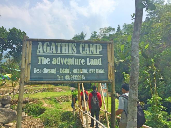 agathis camp