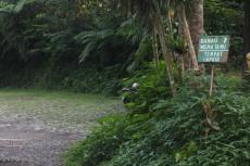 Parkir mobil dekat danau