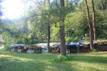 Warung - Traditional Food Vendor