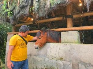 small_horse (2)